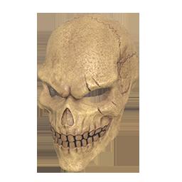 跳伞求生:KOTK 饰品交易-Wasteland Skull Helmet