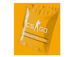csgo 饰品交易-系列 3 收藏胸章胶囊
