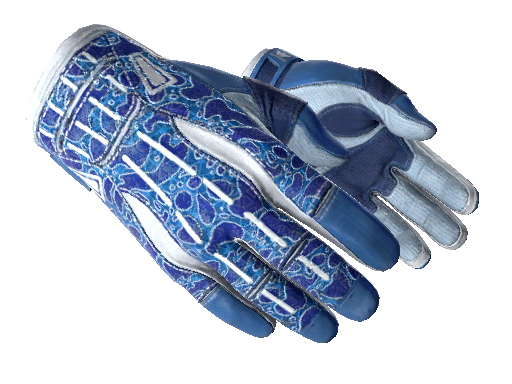 csgo 饰品交易-运动手套(★) | 双栖 (略有磨损)